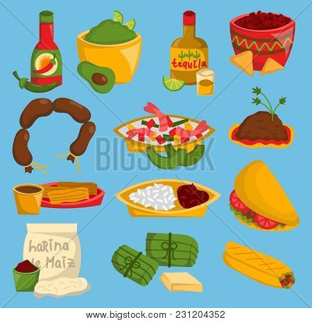 Mexican Traditional Vector Food Cuisine Meat Avocado Tequila Corn And Spicy Pepper Salsa Mexico Lunc
