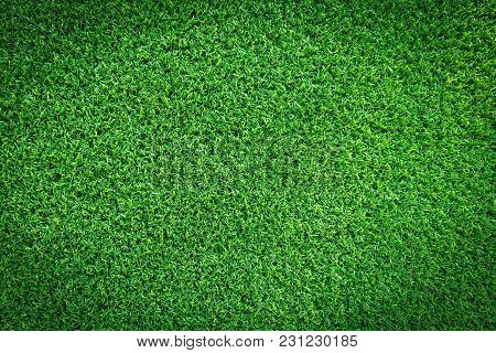 Grass Field Texture For Golf Course, Soccer Field Or Sports Background Concept Design. Artificial Gr