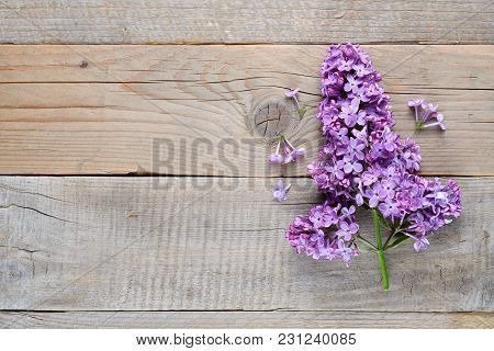 Lilac Flowers On Wooden Background Top View