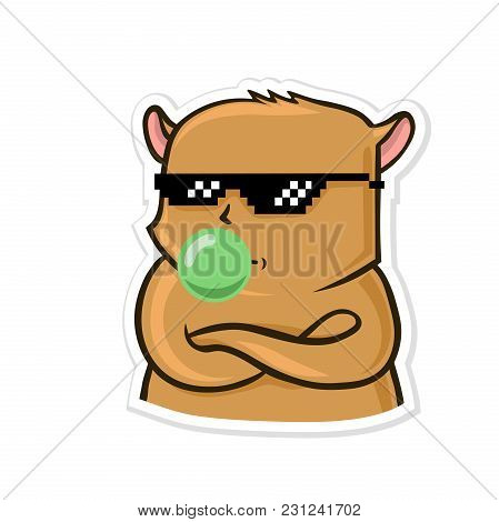 Sticker For Messenger With Funny Animal. Calm Hamster In Sunglasses Inflates Gum. Vector Illustratio