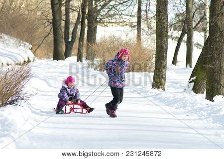 Happy Little Girl Pulling Her Young Sister On The Sleds In Snowy Winter Park. Kids Playing Outdoors
