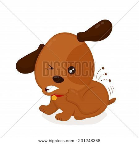 Cute Angry Itchy Dog Scratches Fleas Off. Domestic Or Stray Dog With Skin Parasites. Vector Flat Car