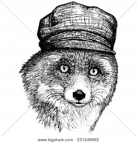 Vector Fox In A Hat Hand Drawn Illustration Of Dressed Fox.