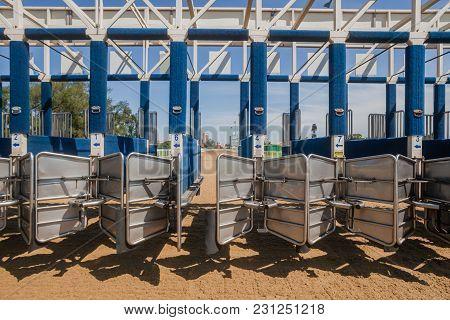 Horse Racing Inside Starting Gate