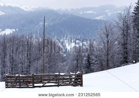 Empty Spay For Storage Hay In Winter Season - Romania