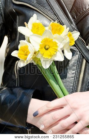 Bouquet Of Daffodils In Female Hands, Manicure. Close-up