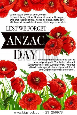 Anzac Day Lest We Forget Greeting Card Of Poppy Flowers. Vector 25 April Australian And New Zealand