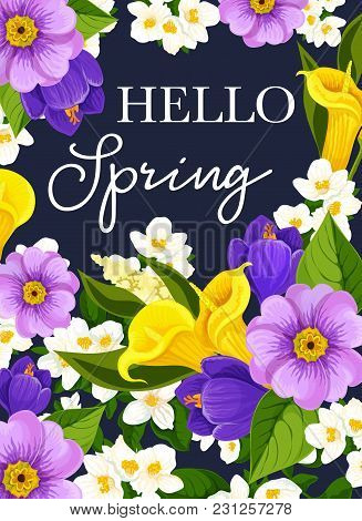 Hello Spring Greeting Card Of Springtime Wishes And Floral Bunch For Seasonal Holidays. Vector Sprin