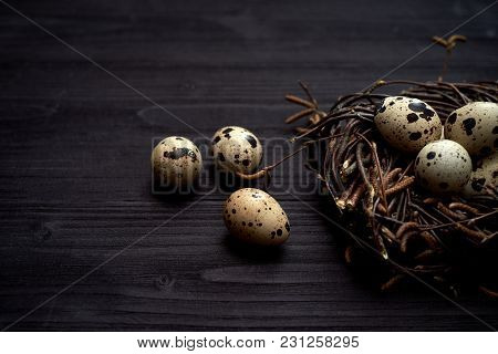 Quail Eggs In Nest On Rustic Wooden Background, Copy Space. Healthy Food Concept. Top View, Flat Lay