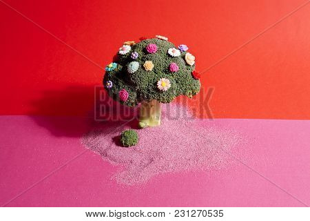 Pink Red Broccoli Flowers And Sand