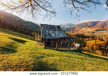 Fantastic sunny day in the countryside and the old hut. Location rural place of Ukraine, Europe. Scenic image of incredible nature landscape, attractive mountain view. Discover the beauty of earth.