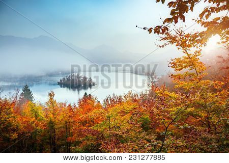 Aerial view of the island on alpine lake Bled from Osojnica viewpoint. Scenic image of beautiful nature landscape, amazing view. Location Julian Alps, Slovenia, Europe. Discover the beauty of earth.