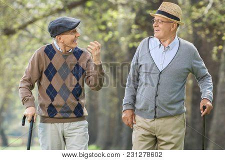 Two elderly men having a conversation outdoors