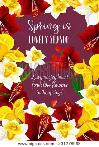 Springtime Floral Greeting Card With Spring Is Lovely Time Quote. Vector Design Of Flourish Hibiscus