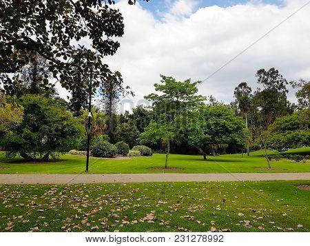 The Valley In Brisbane Botanical Garden, Queensland, Australia.
