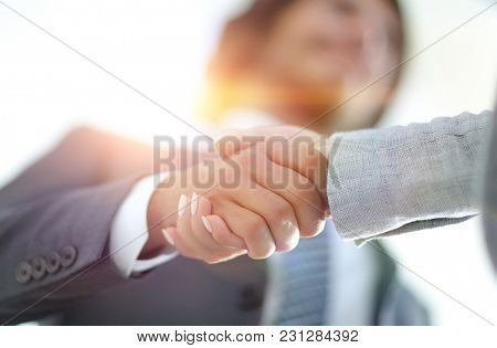 Businessmen handshaking after successful business meeting
