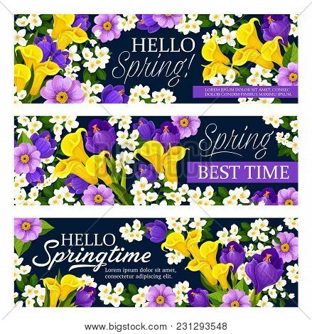 Hello Spring Floral Greeting Banners For Spring Seasonal Holiday Wishes Of Calla Lily And Orchid Or