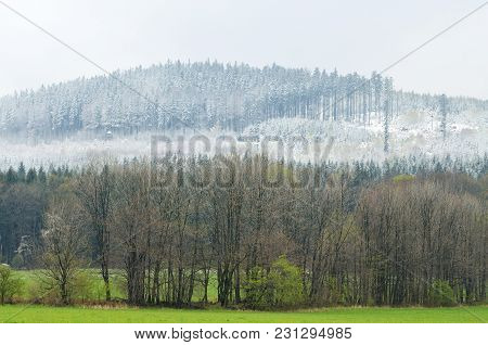 Snowy Trees In The Mountains And Spring In The Valley - Winter And Spring Landscape Concept Symboliz