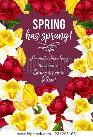 Spring Is Sprung Quote For Springtime Greeting Card And Seasonal Wishes Design. Vector Bunch Of Bloo