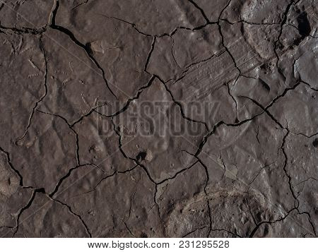 The Surface Of A Brown Moist Oily Fertile Land, Covered With Cracks.