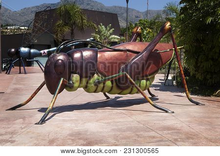 Benidorm-jun 10, 2015: Entrance To Terra Natura Benidorm Zoo. A Giant Statue Of Grasshopper At The E