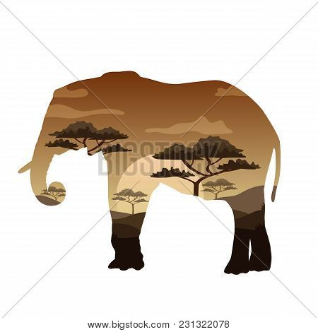 Vector Illustration Double Exposure. Elephant Wildlife Concept
