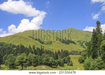 Picturesque Natural Sunny Landscape Of Green Alpine Meadows. Panorama Of Mountain And The Forest At