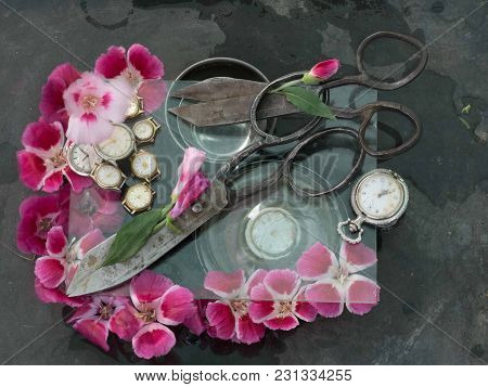 Two Pairs Of Black Antique Scissors Stuck Into Each Other Amidst Pink And Crimson Flowers, White Wri