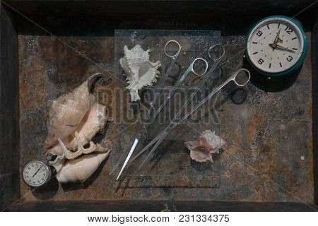 Two Pairs Of Long Thin Scissors Under A Transparent Glass On A Rusty Background Amidst A Pink Exotic
