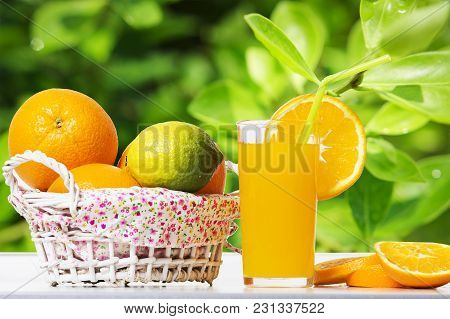 Fresh Orange Juice And Oranges In Basket On Table Against Background Of Green Leaves Of Orange Tree.