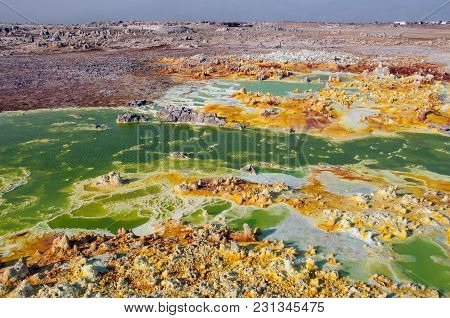 Huge Green Field With Yellow Spots Of Lava Sulfuric Volcanoes Among The Pink Earth Of The Desert Of