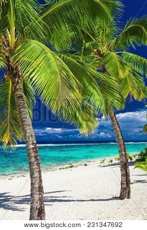 Tropical sandy beach with rocks and palms on Cook Islands, Rarotonga