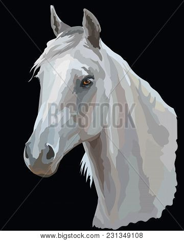 Colored Portrait Of White Arabian Horse. Horse Head  In Profile  Isolated Vector Illustration On Bla