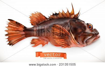 Scorpionfish. 3d Vector Icon. Seafood, Realism Style