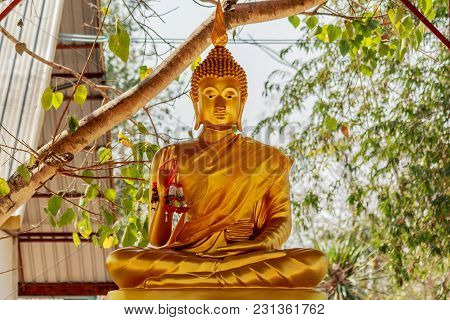Golden Buddha Statue Sitting Under Bodhi Tree.