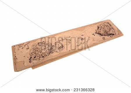 A Wood Plank Destroyed By Termites Isolated On White