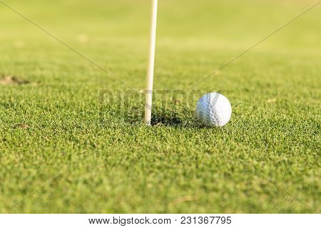 Golf Ball On The Green Grass Near To Pitch. Play Golf On The Grass, Close-up