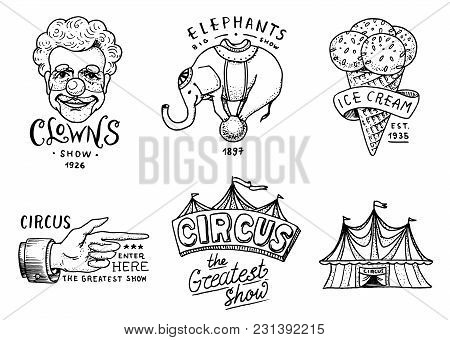 Carnival Circus Badge. Banner Or Poster With Animals. Clown And Elephant, Ice Cream And Focus, Magic