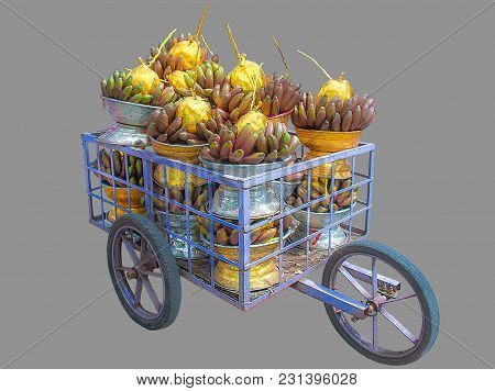 Fruits For Religious Offering. A Trolley Contains Raw Bananas And Golden Coconuts Arranged Inside Si