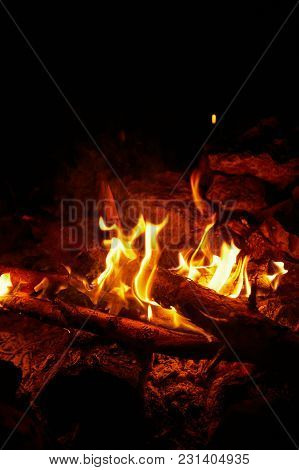 Bonfire Flames On A Black Background For Cooking Food.