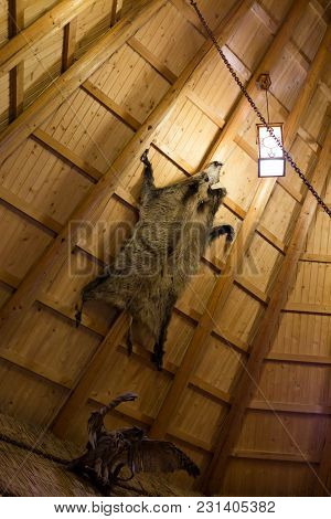 Wild Boar Fur With Head On Wooden Wall