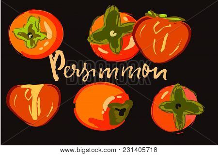 Persimmon Hand Drawn Illustration Set For Your Design