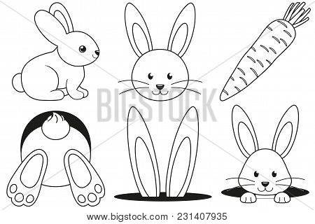 Line Art Black And White Rabbit Pose Hole Carrot Icon Set Poster. Coloring Book Page. Easter Themed