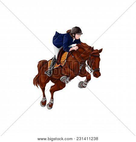 Woman, Girl Riding Horses Vector Illustration, Isolated. Equestrian Sport Training Horseback