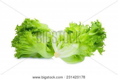 green frillice iceberg lettuce isolated on white background
