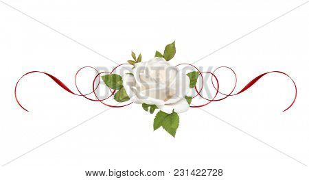 one white rose flower with red ribbon isolated on white background cutout