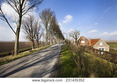 Country Road On A Dike In Dutch Polder Landscape In The Hoeksewaard In The Netherlands