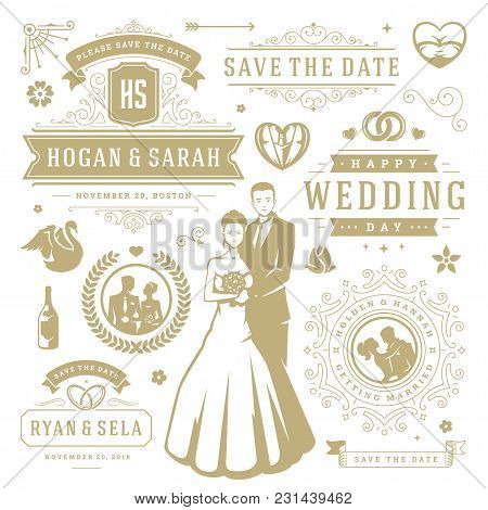 Wedding vector design elements vector photo bigstock wedding vector design elements and objects set vintage save the date labels and badges decoration ornaments and icons junglespirit Images