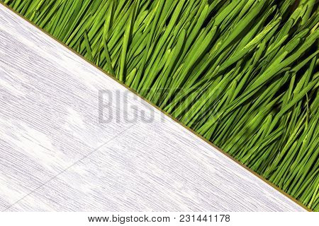 Grass With Space For Text