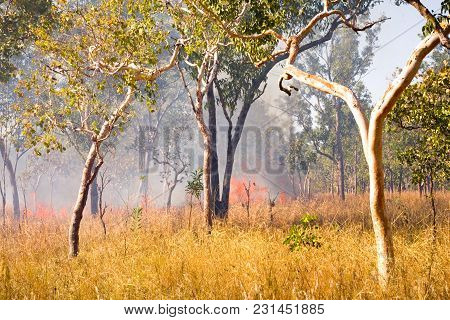 Bushfire In Outback Northern Territory Australia. This Is The Burn Off Of The Dry Grasses At The Beg